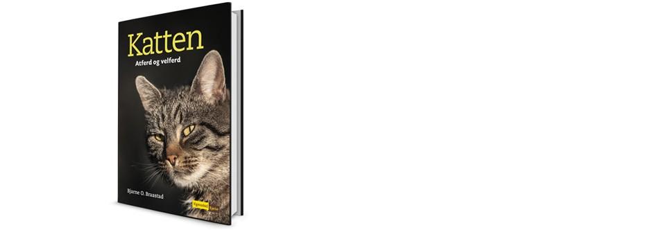Kattens Adferd og Velferd